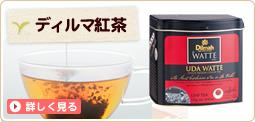 ディルマ紅茶