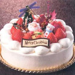 たっぷり苺のクリスマスデコレーション
